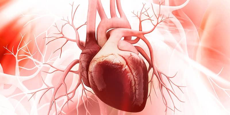 T.M.Hospital-Cardiology